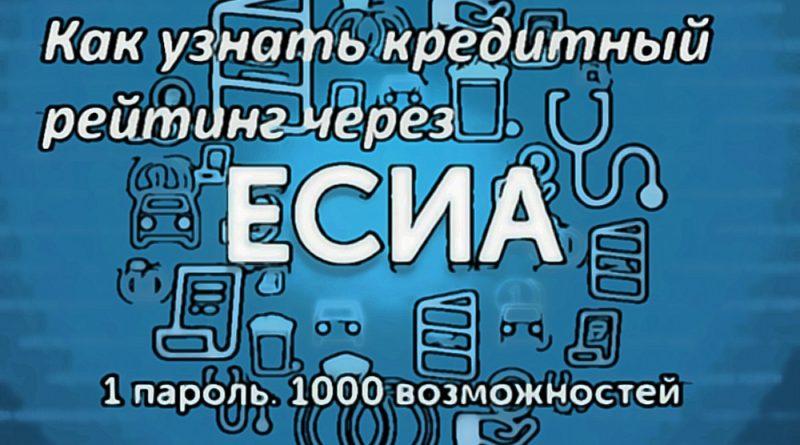 Как узнать кредитный рейтинг через ЕСИА